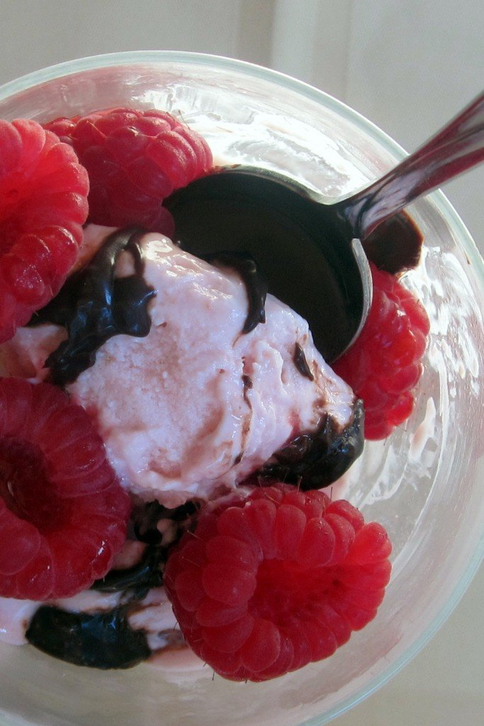 Raspberry Greek Frozen Yogurt