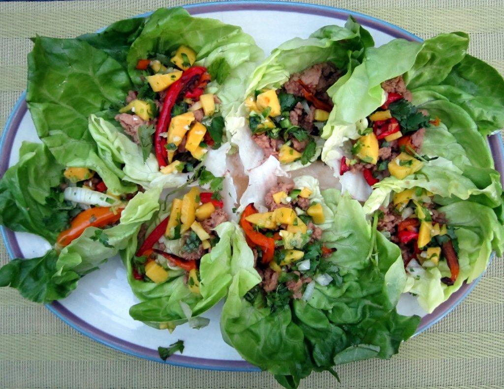 Thai Chicken Lettuce Wraps with Sweet Mango-Cilantro Salsa | Ambitious ...