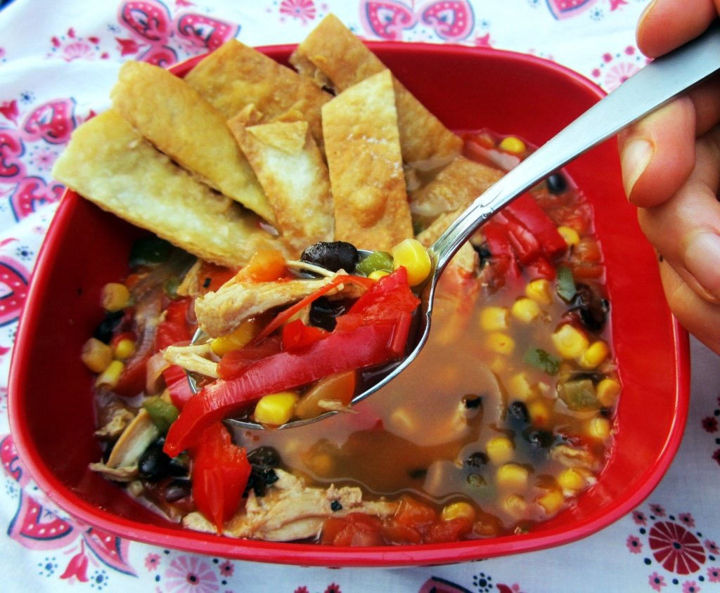 mexican chicken soup in a bowl with tortilla strips