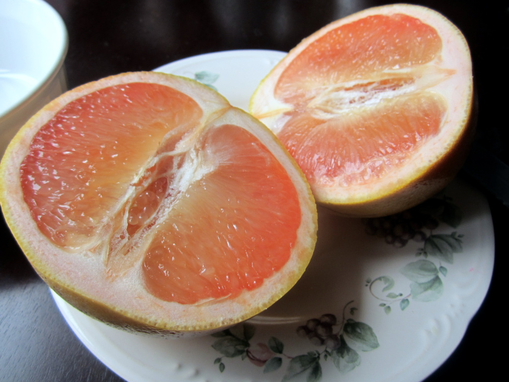grapefruit cut in half on a plate