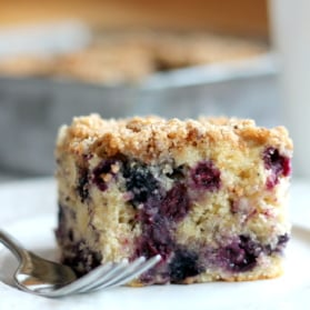 piece of blueberry coffee cake
