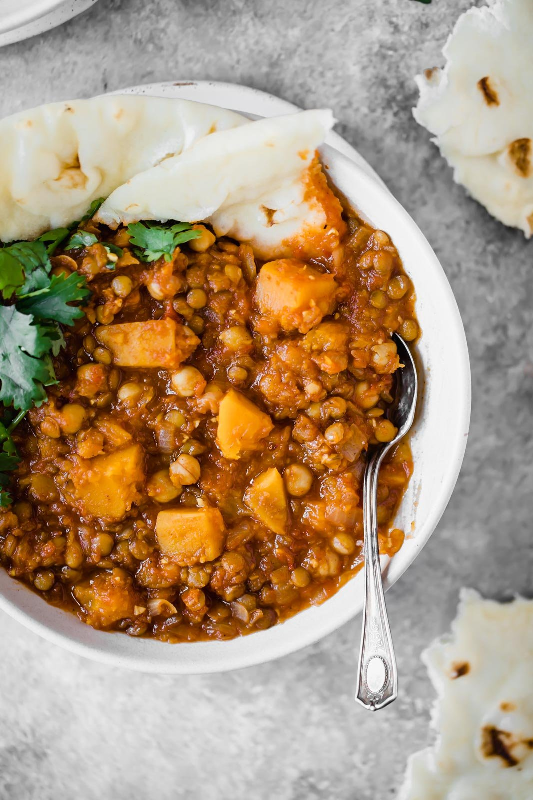 butternut squash chickpea lentil moroccan stew in a bowl with pita