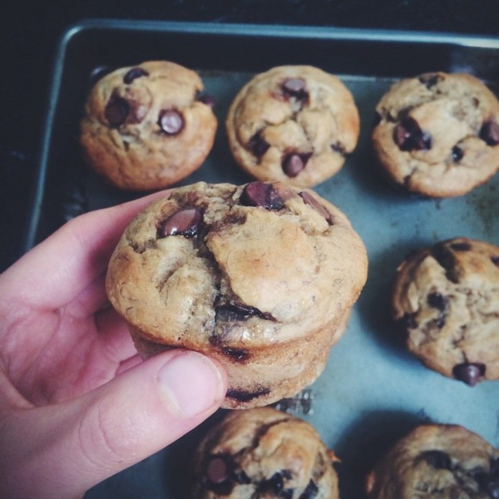 Holding a chocolate chip muffin