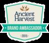 AHQ-BloggerAmbassador-Badge-multicolor