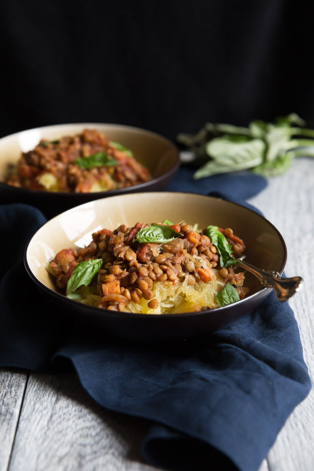 Protein and fiber-packed vegetarian lentil sloppy joes served on top of spaghetti squash. Everything is made in the slow cooker for ease -- even the spaghetti squash! Vegan and gluten free!