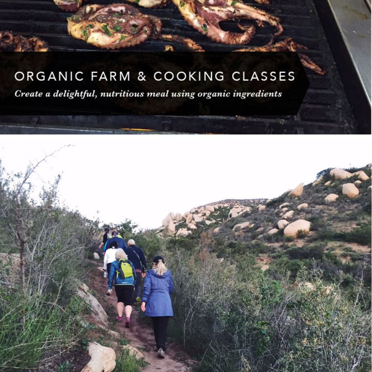 Wellness Travel: A review of Rancho La Puerta in Tecate, Mexico