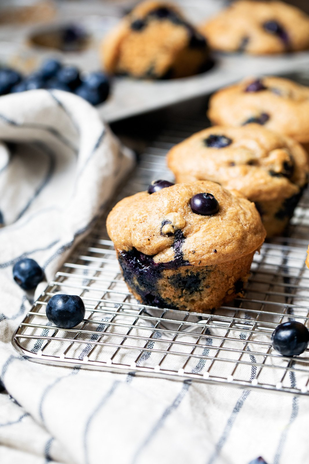 Healthy Blueberry Greek Yogurt Muffins made with whole wheat flour, greek yogurt, naturally sweetened with maple syrup and just a touch of heart healthy avocado oil (or coconut oil!).
