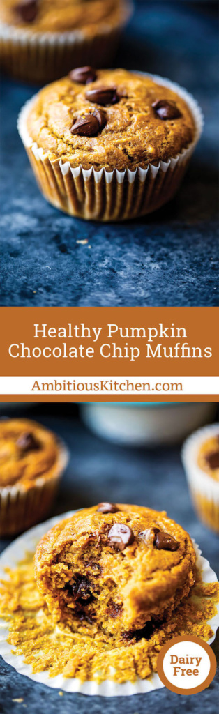Pumpkin chocolate chip muffins made a little bit healthier. You'll love these satisfying muffins for a snack -- freezer friendly and great for kids!