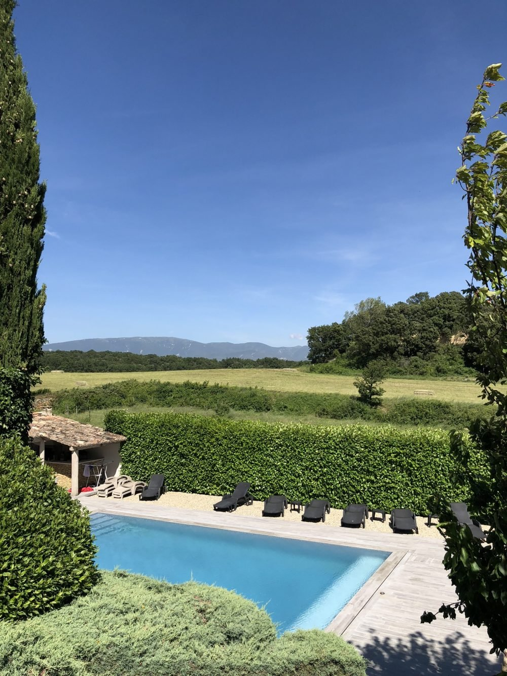 pool with a vineyard in the background