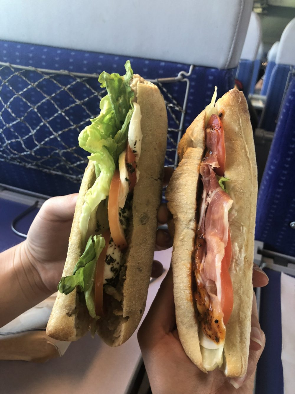 hands holding two sandwiches on a train