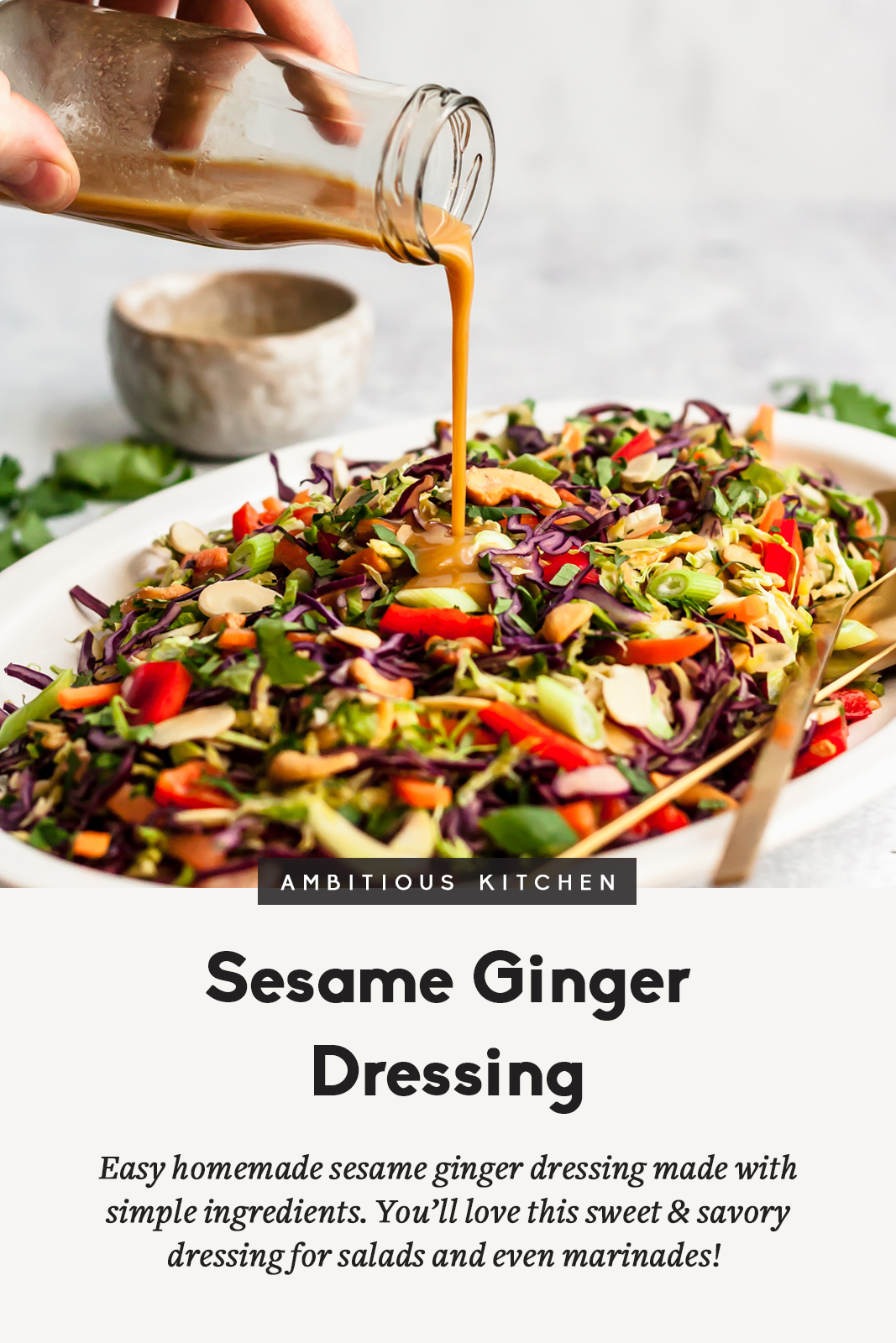 Flavorful, easy sesame ginger dressing made with simple ingredients. This healthy homemade dressing is sweet & savory, and perfect for adding to veggie packed salads or using as a marinade.
