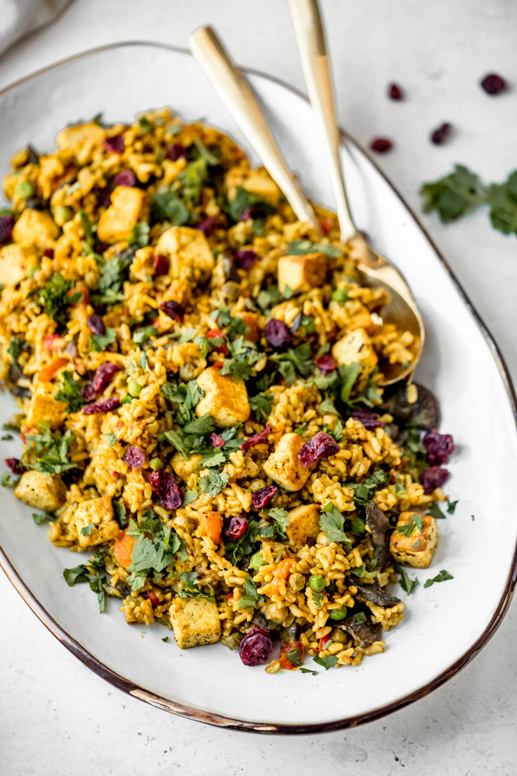 curried coconut rice on a platter with tofu, cilantro & dried cranberries
