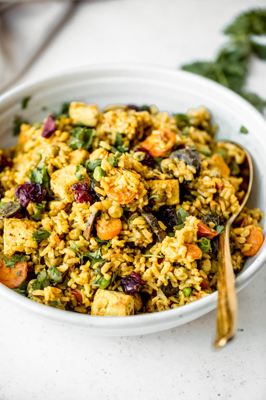 bowl of curried coconut brown rice with tofu