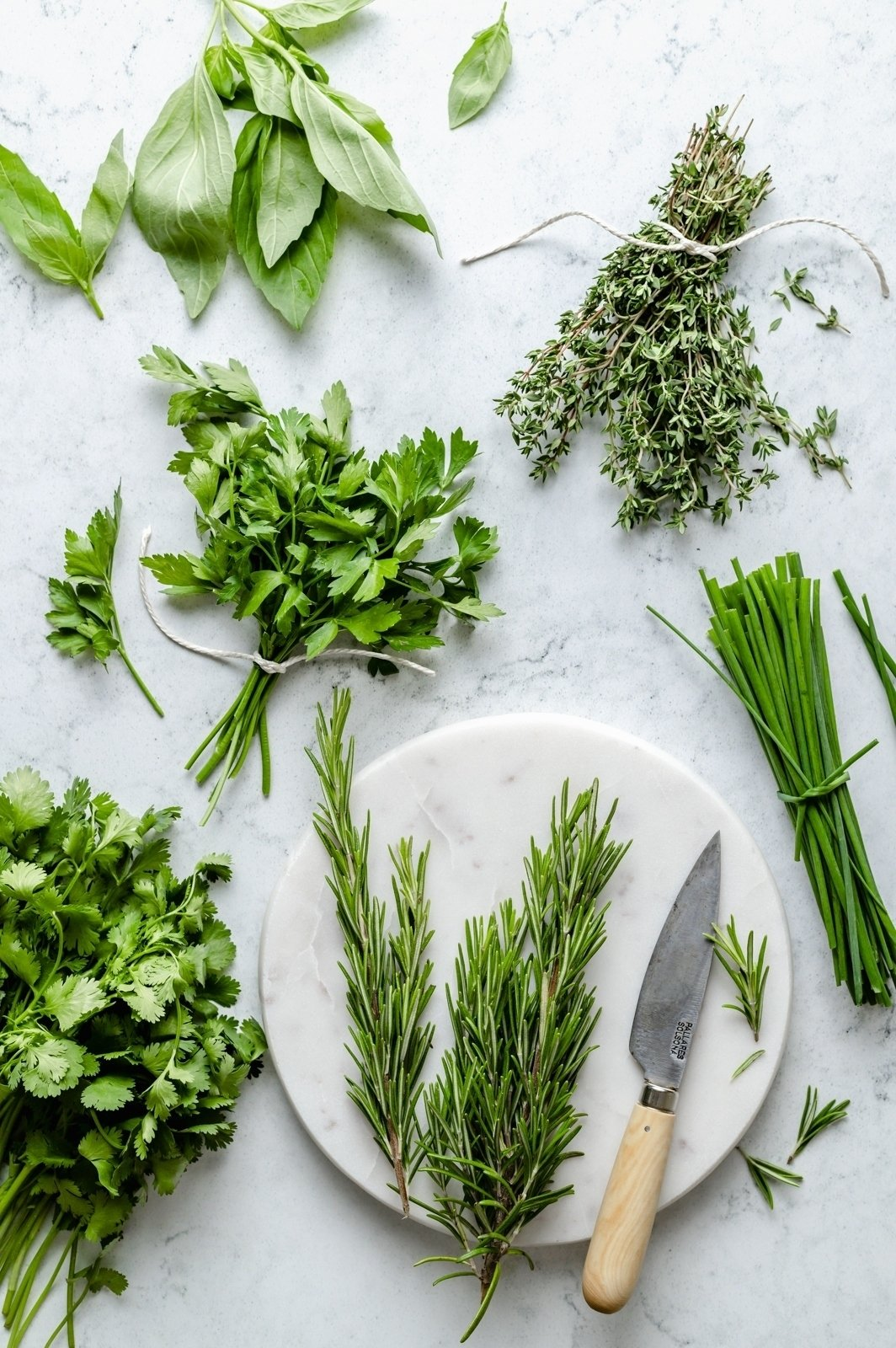 fresh herb bunches on a marble board