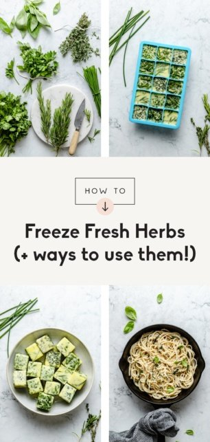 collage of how to freeze herbs